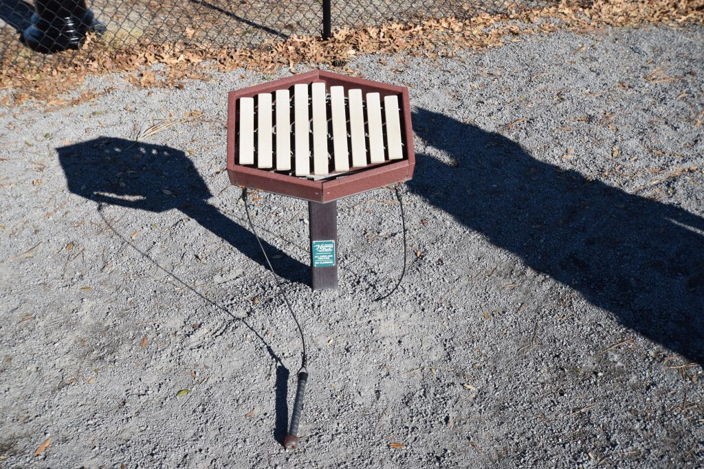 Savannah's Playground Musical Instruments